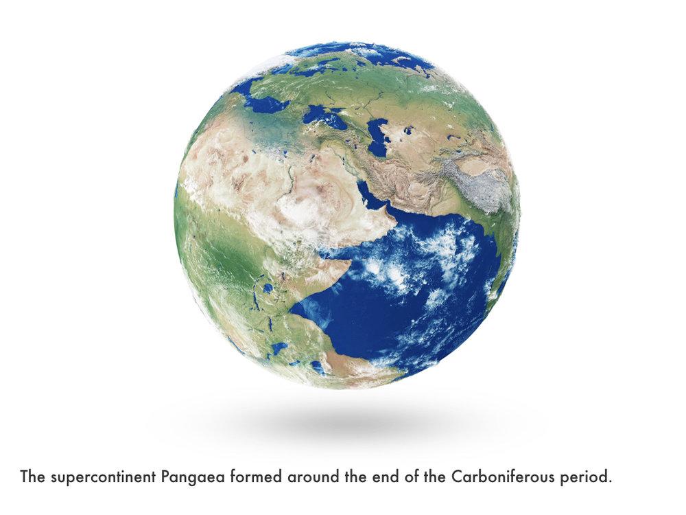 Carboniferous Period.036.jpeg