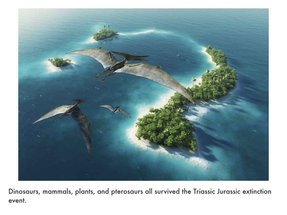 Jurassic Period.016.jpeg