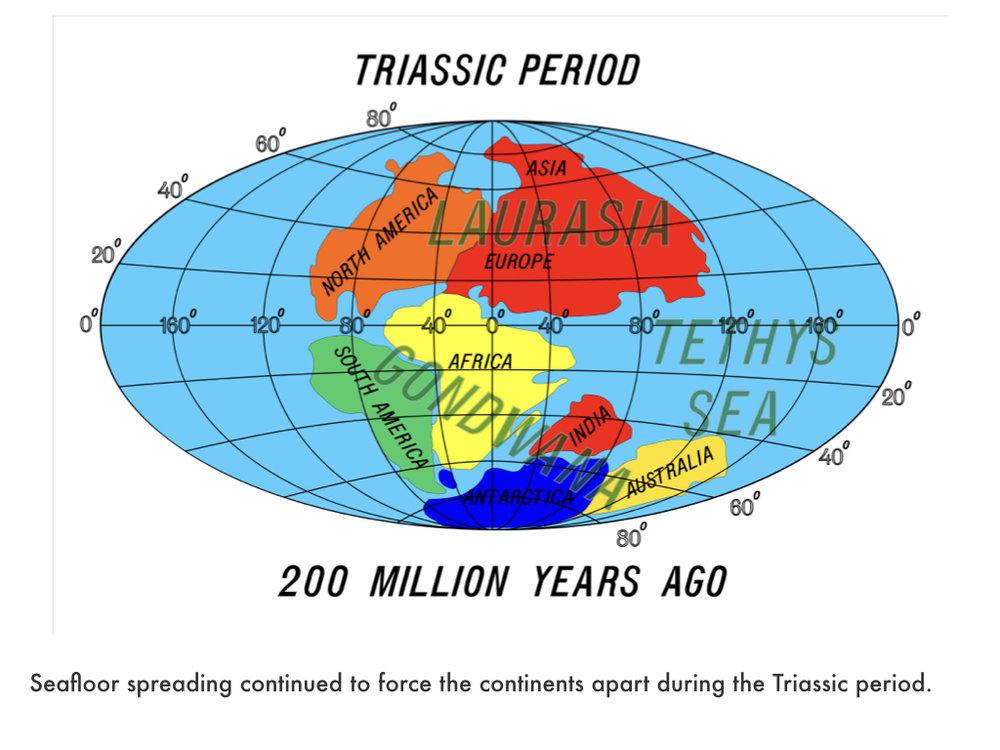 Jurassic Period.017.jpeg