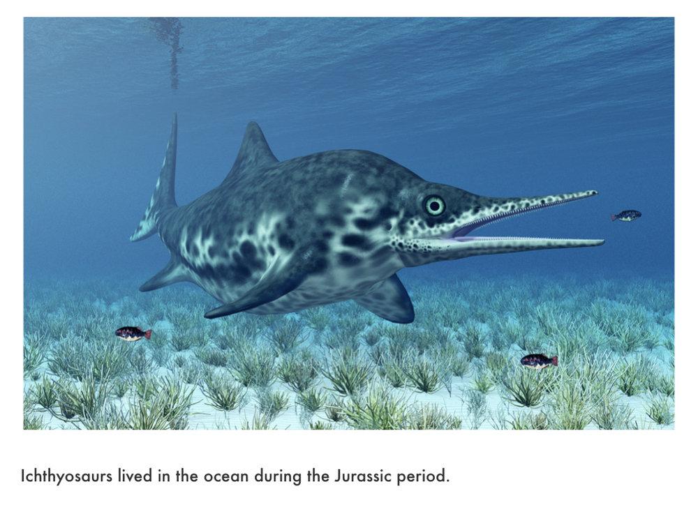 Jurassic Period.023.jpeg