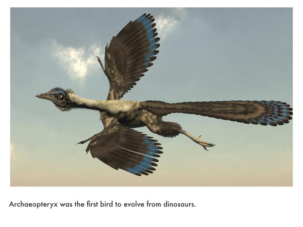 Jurassic Period.028.jpeg
