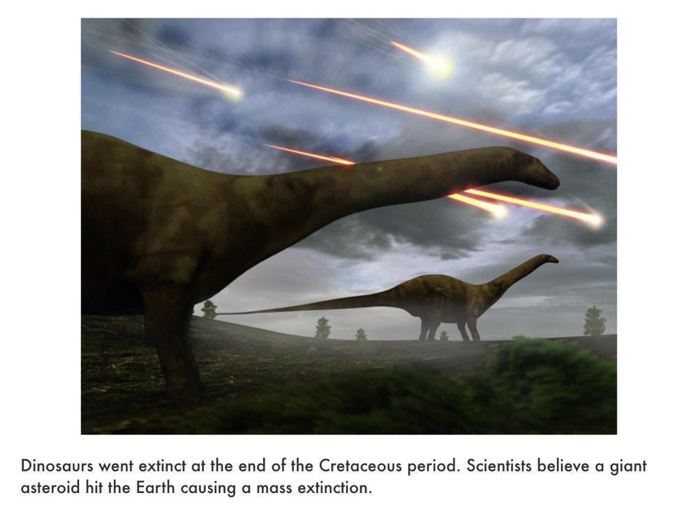 Paleogene Period.016.jpeg