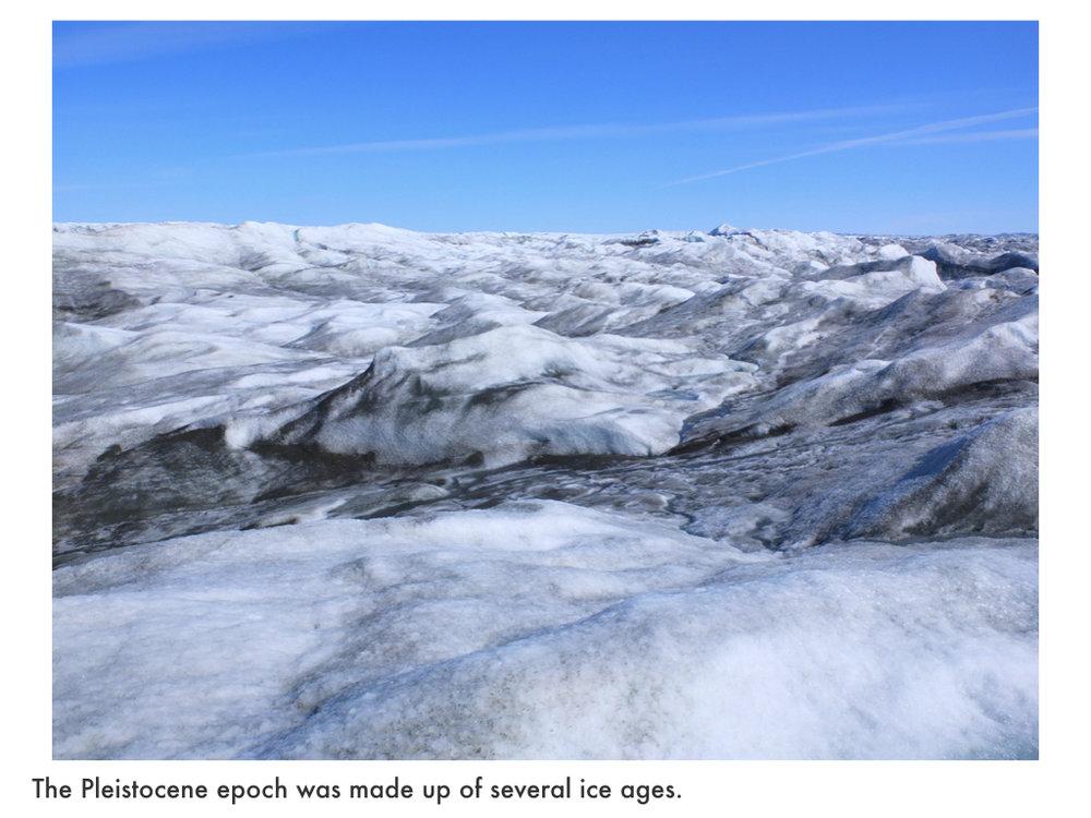 Quaternary Period.019.jpeg