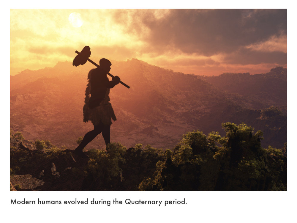 Quaternary Period.023.jpeg