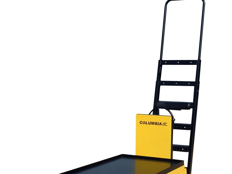 4 & 6 Step Ladder
