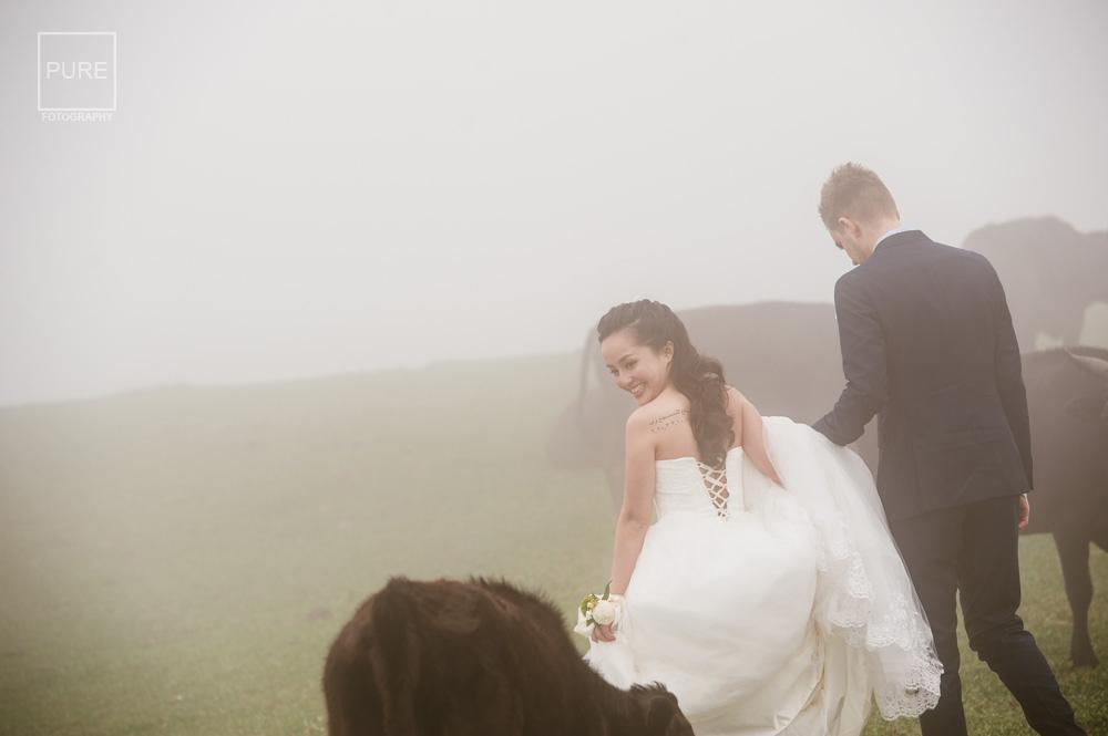 擎天岡婚紗拍攝