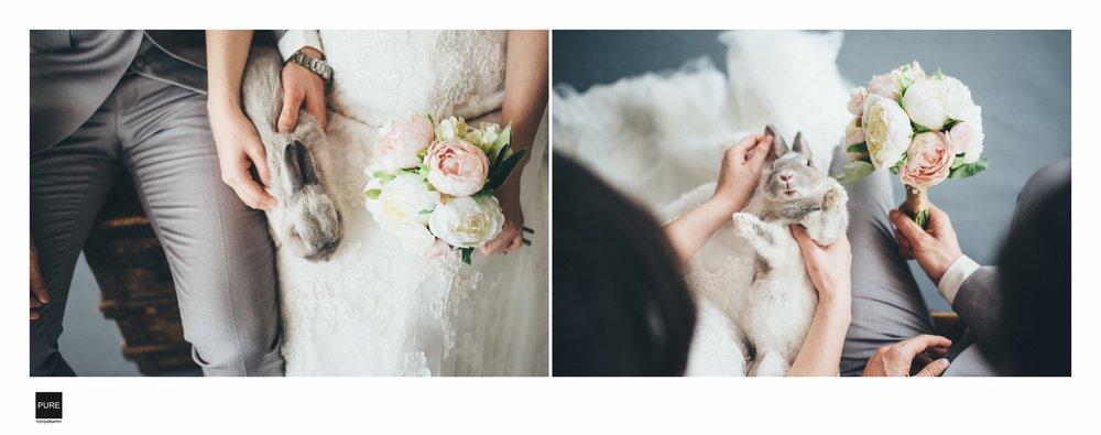 婚紗棚拍逆光與寵物