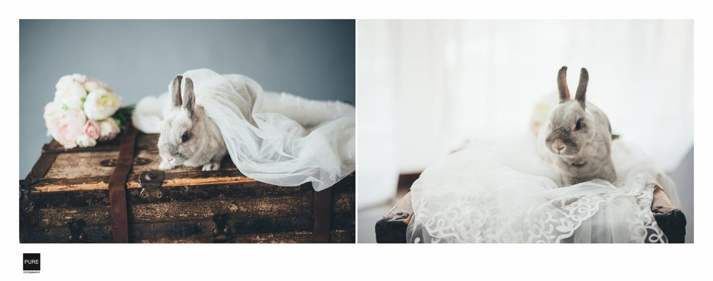 PUREFOTO_台灣自助婚紗攝影Prewedding_婚紗兔子與捧花特寫