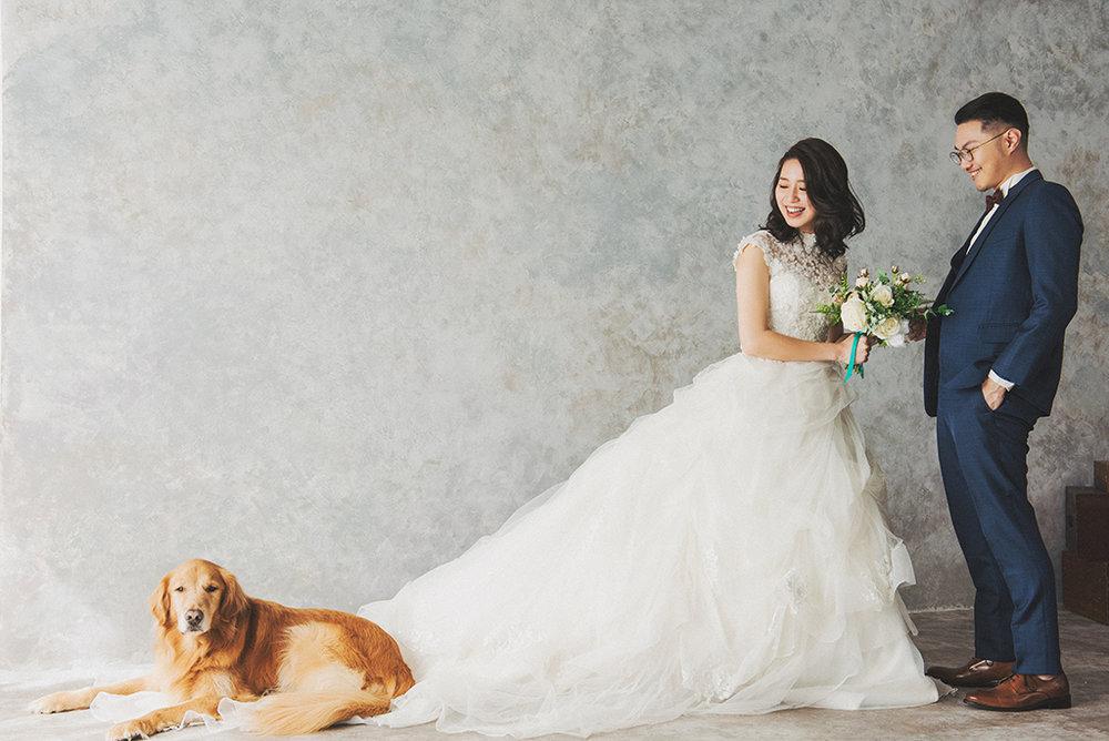 Sony一出場就鬧事!還好遇到愛狗人,這張還默默被選成精修的照片呢!