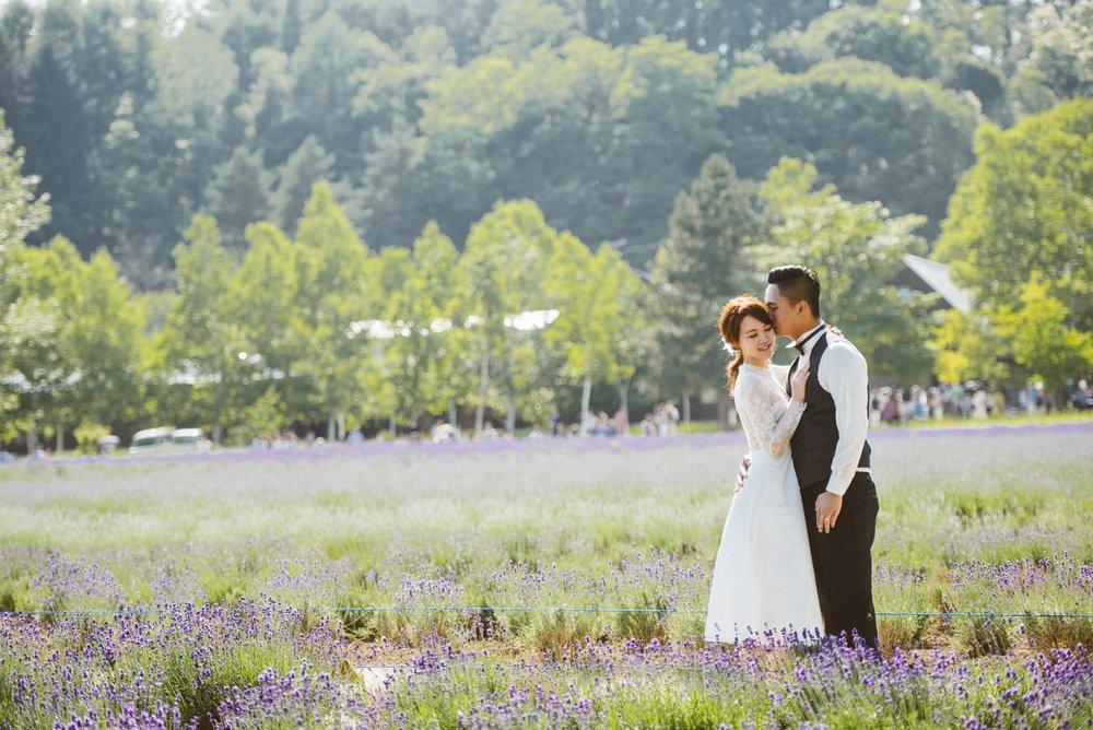 北海道薰衣草婚紗