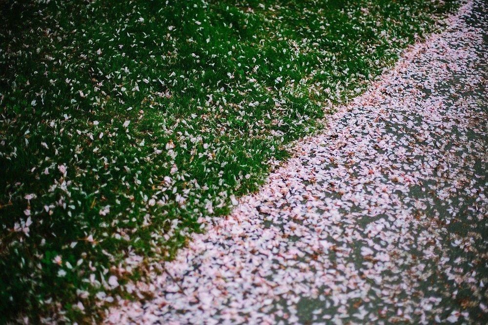 MinneapolisWeddingPhotography_0010.jpg