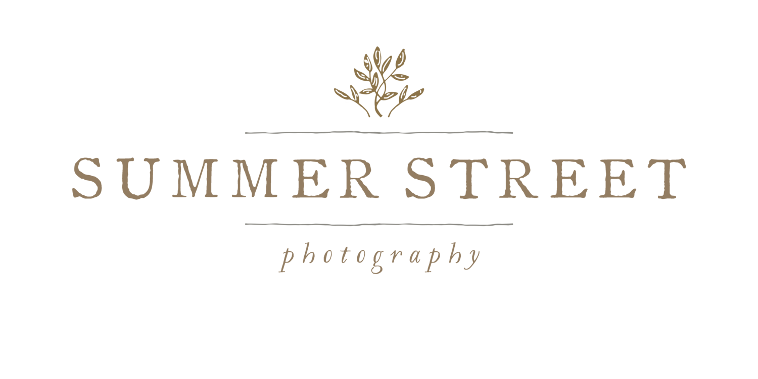 Summer Street Photography - Minneapolis and Saint Paul Wedding and Family Photographs