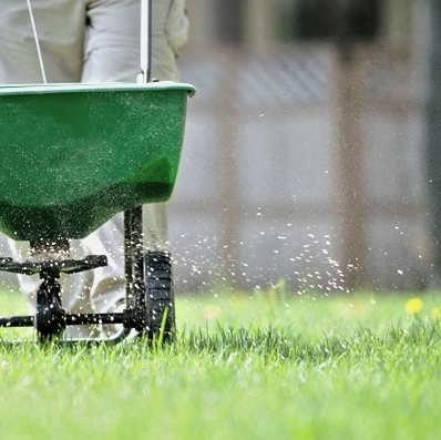 Lawn-treatment.jpg