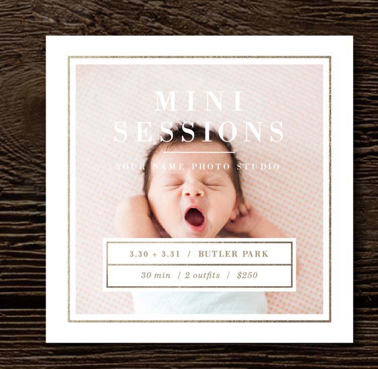 Photographer Mini Session Template Lily - Mini session templates