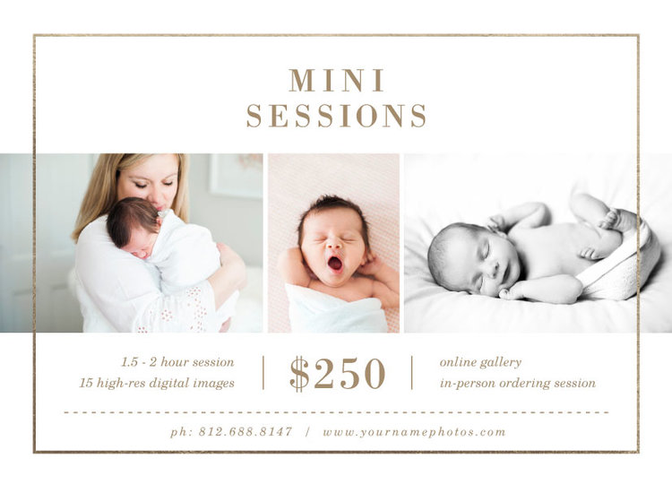 mini session flyer template lily