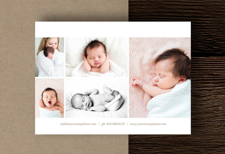 Newborn photography mini session template design photography flyer template designbybittersweet
