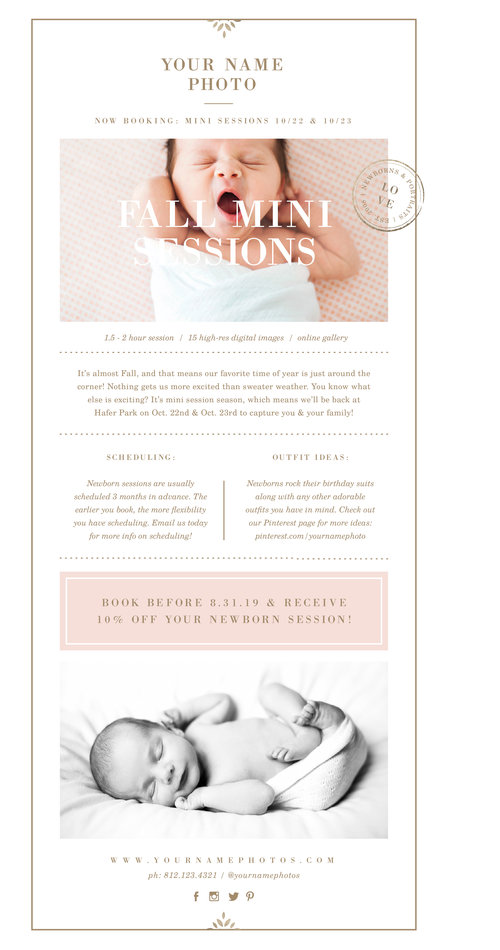 photography email newsletter template lily