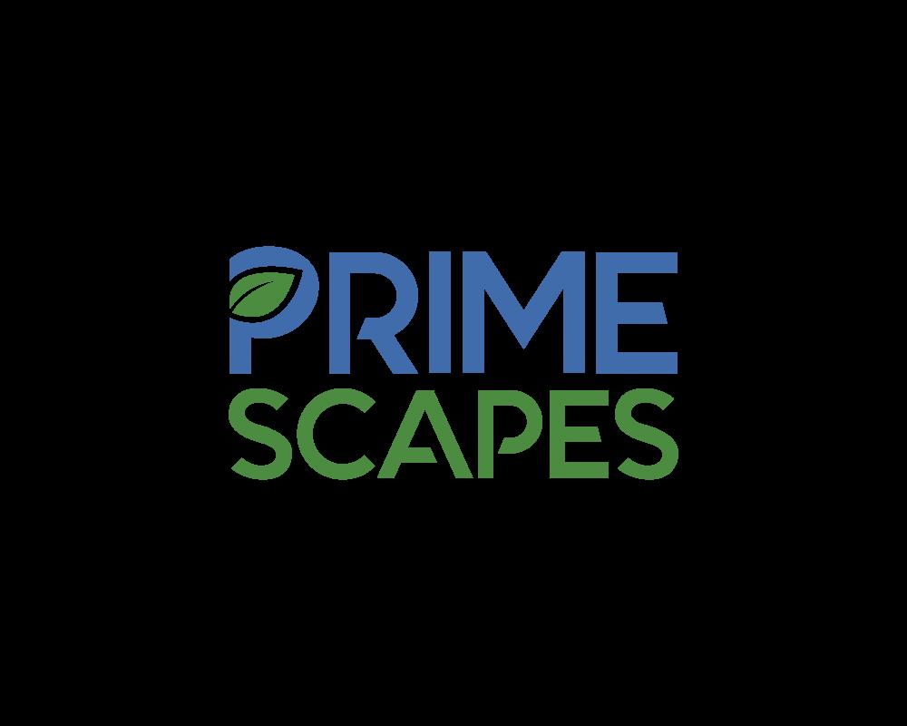 prms-logo-design-portfolio.png