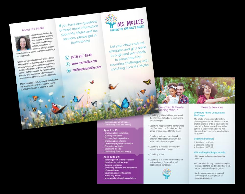 ms-mollie-brochure-design.png