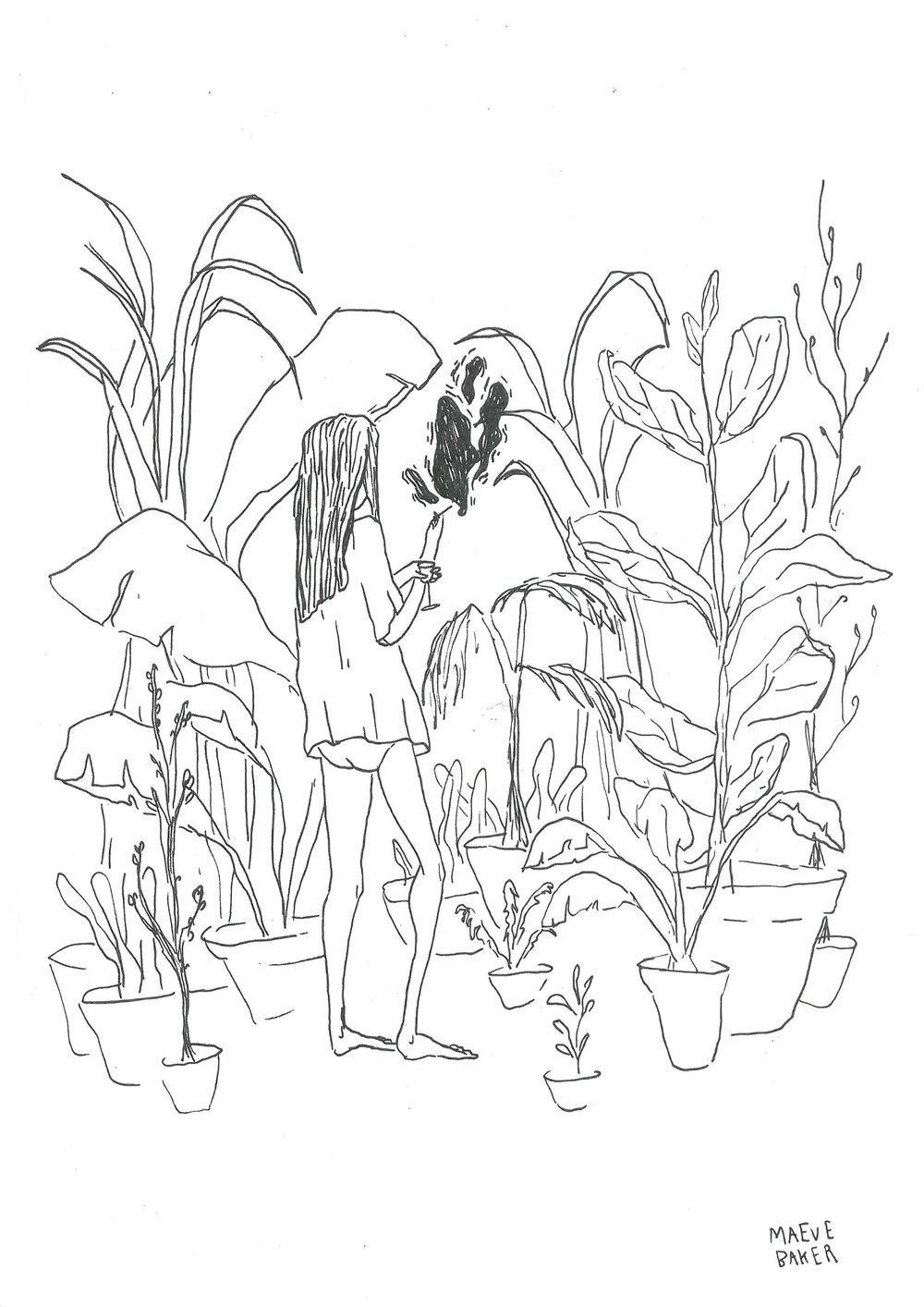 maeve plants.jpg