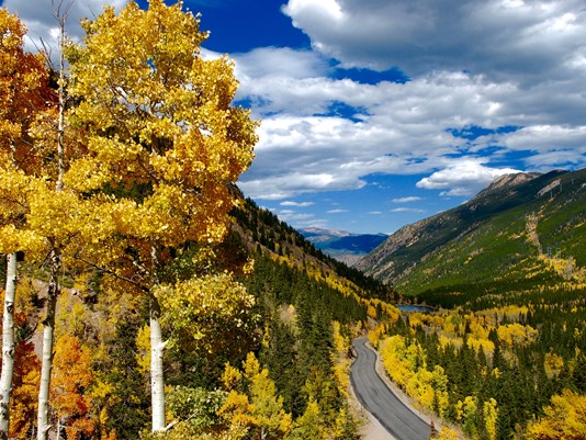 - Take a Field Trip: Fall really sprung up on us and somehow it is already snowing in the mountains! But there are so many beautiful places to see the natural beauty that Colorado has to offer! Take a staycation in one of the front ranges many mountain towns or just pop up for the day!