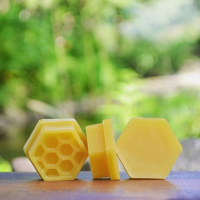 Ask and you shall receive, we now carry our beeswax! Thanks for the patience as we continue the transition to foundation-less beekeeping which makes beeswax harvesting a little bit easier. Aren't these little guys cute? At just .70 cents each, order 1, 100, or 1,000! • • • • • #pure #beeswax #candles #skincare #honeysownherbs #doityourself #hobbies #madeinhawaii #hexagons #honeyeverything #beeobsessed #cantstopwontstop