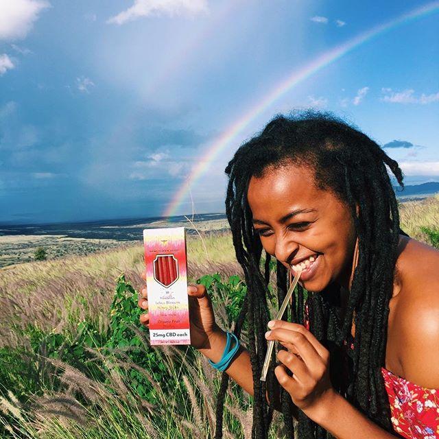 Taste the real rainbow! Our organic fruit medley honey sticks are the tastiest CBD you will ever have! 🐝🤩🍯 • • • • • #cbd #cbdhoneysticks #lehuahoney #honeysownherbs #tastetherainbow #hawaii #luckywelivehawaii #joy #love #passion #healthiswealth #hemp