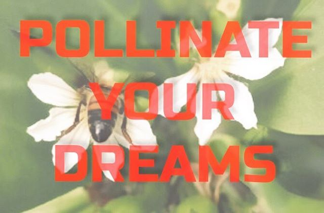 Your mind, your talent and your intention in this world are rare and equally precious, pollinate your dreams and enjoy the fruit of your labor. The world needs you now more than ever! 🌸🌸🌸🌸🌸🌸🌸🌸🌸🌸🌸🌸🌸#dothework #youareagem #oneofakind #juststart #itsalwaystoearlytoquit