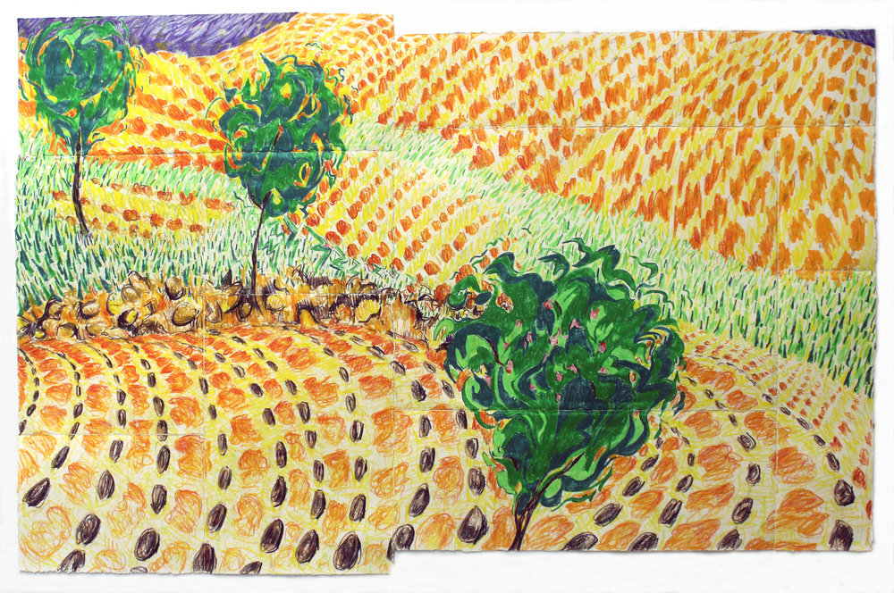 Untitled (Benito Juarez, fields)