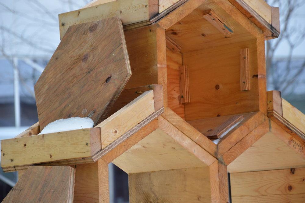 Hôtel à insectes (en cours de construction), cours des sciences de l'Université du Québec à Montréal