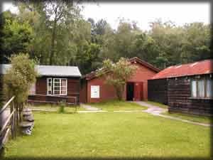 woodland room