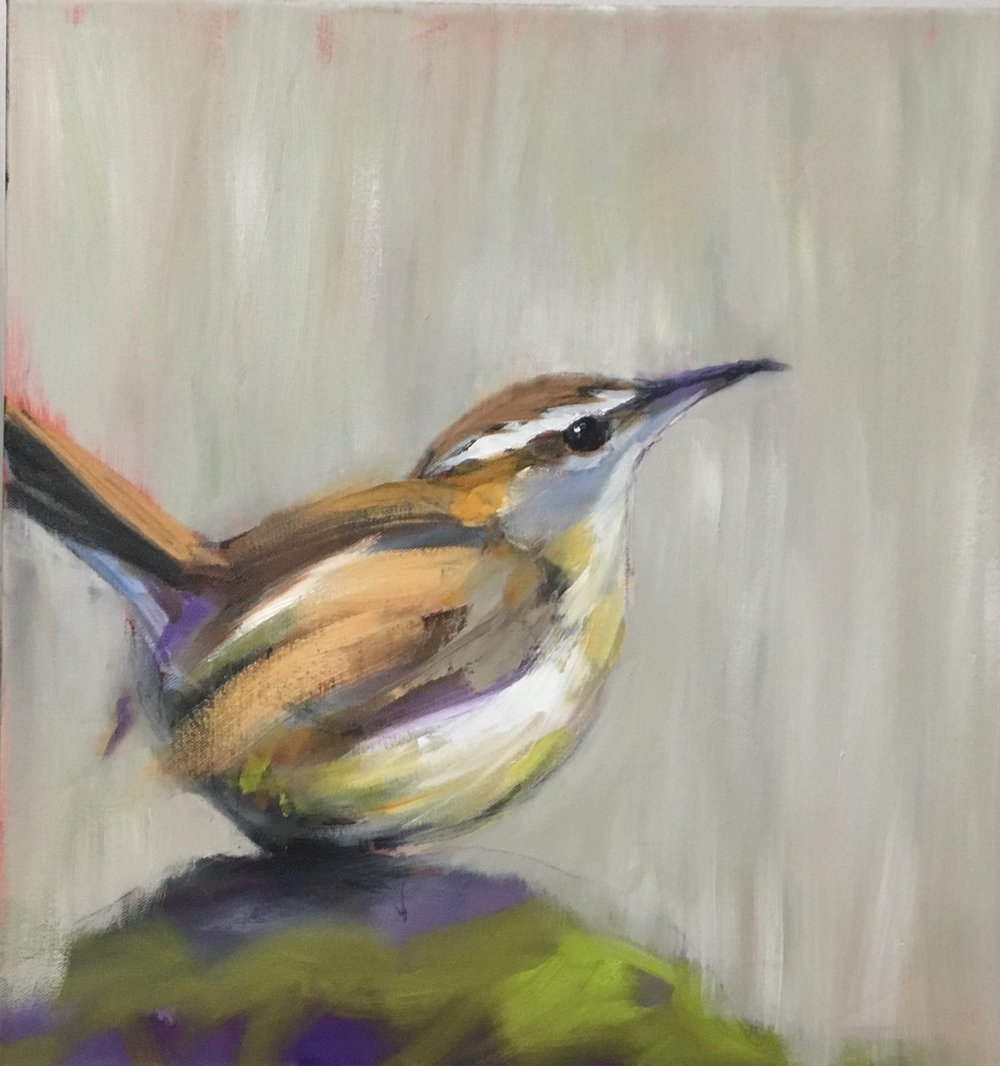 CAROLINA WREN, SOLD