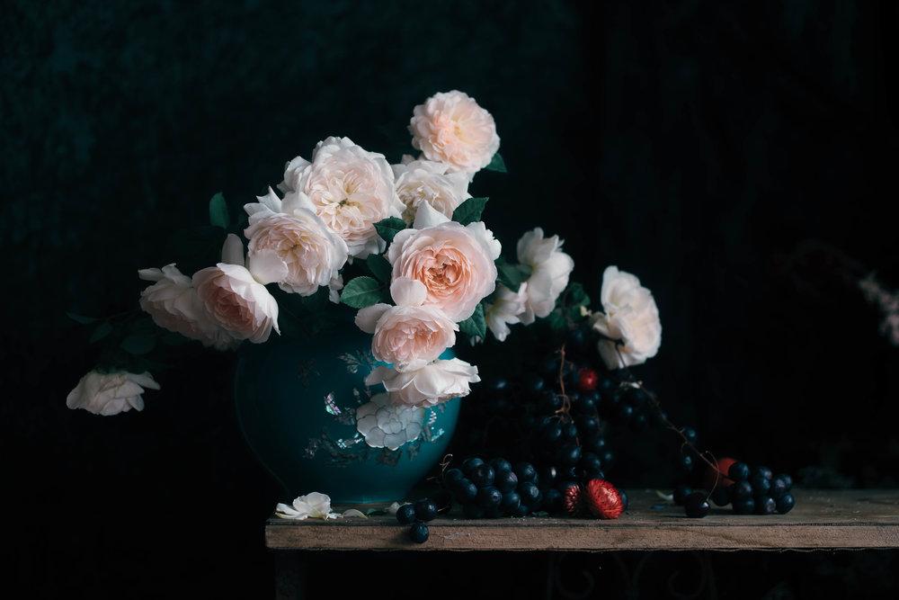 roses 964_05 (1 of 1).jpg