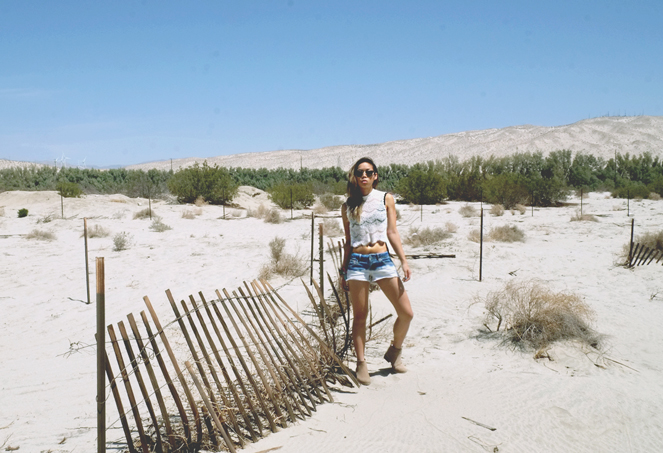 desertdays_06