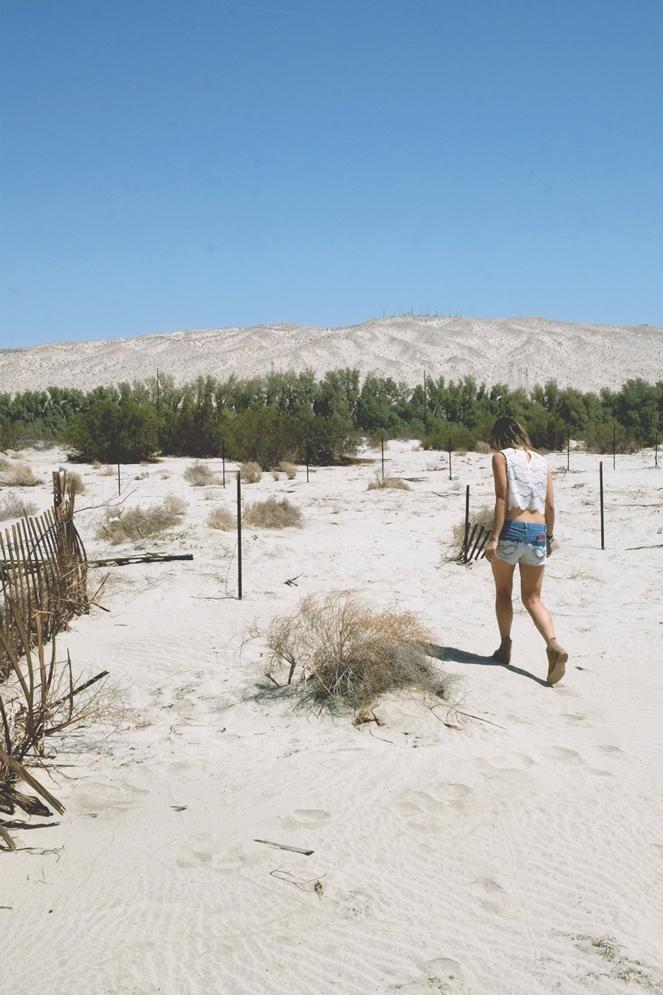 desertdays_07