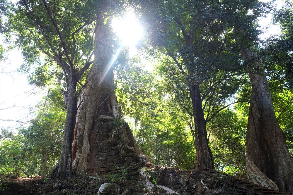 cambodia_03.jpg