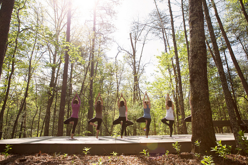 Yoga in the Park anybody - taking in the forest atmosphere
