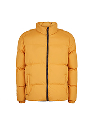NEW LOOK  Puffer Jacket