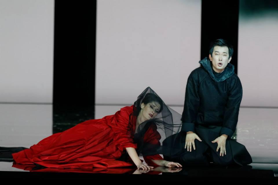 2014年2月法国图卢兹市立歌剧院 唐尼采蒂歌剧《宠姬》-1.jpg