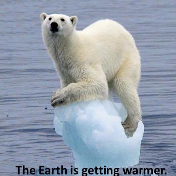 polar-bear-e1505522044649.jpg