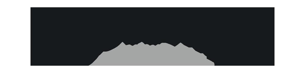 DRO_Logo-L6_Pantone433-479.png