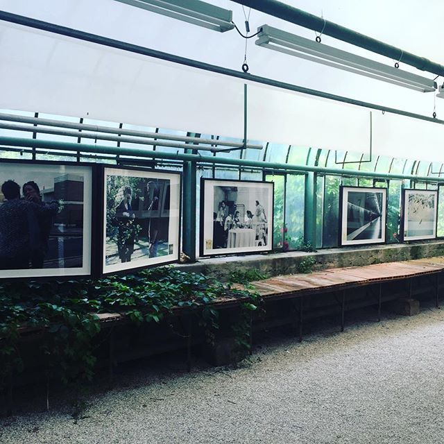 #earlybird #ScenesInTheGlasshouse #ThomasZanonLarcher #morningview #welcome #seeuthisafternoon