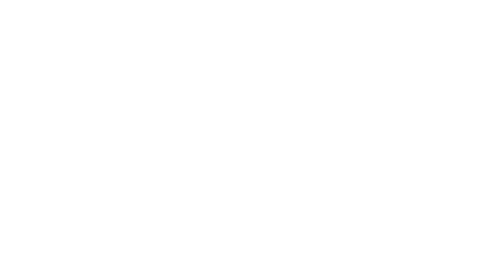 Dublin Chamber of Commerce Logo WO.png