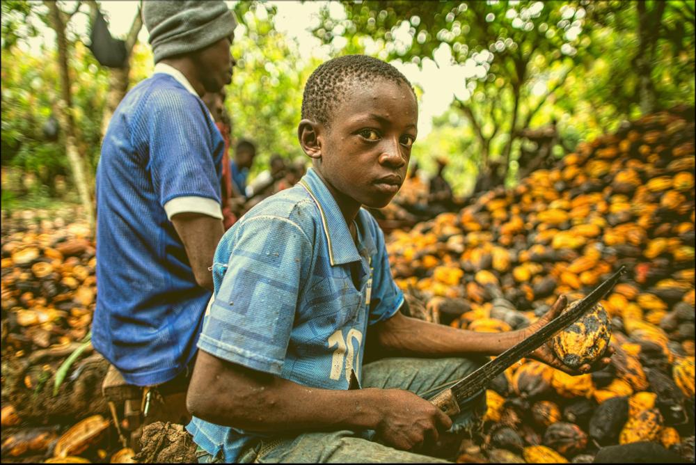 Kinderarbeid uitgebannen? Welnee. - Zie bijgevoegd 10 merken waarover zeer sterke vermoedens bestaan dat er nu nog steeds bij hun producten kinderarbeid voorkomt.