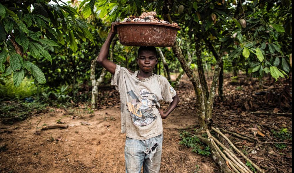 Chocola vrij van kinderarbeid? - Dit artikel laat zien dat kinderarbeid nog gemeengoed zijn.Let op: als je een zwart scherm ziet i.p.v. de head photo, scroll naar beneden