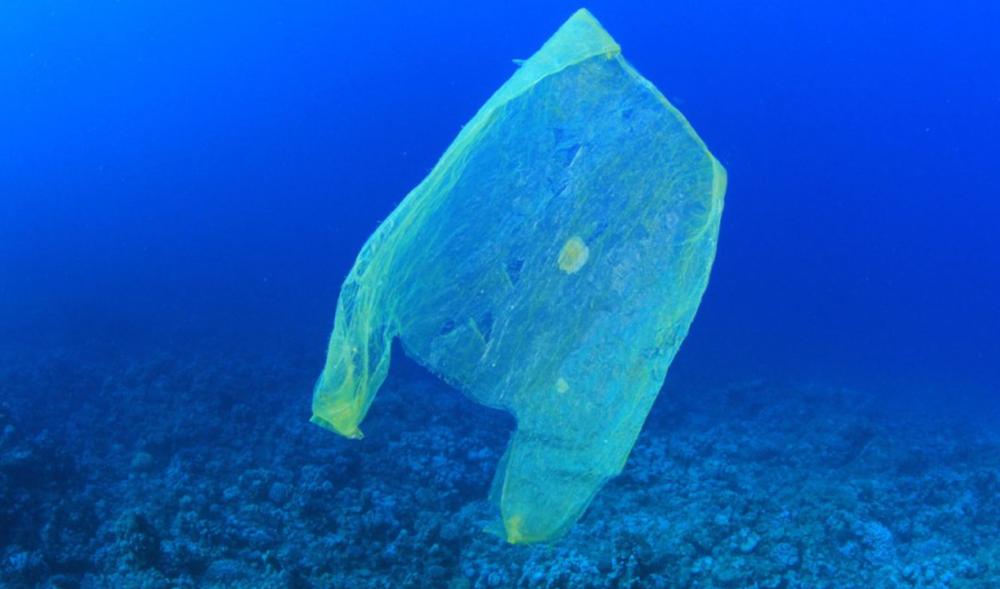 Minder plastic tasjes blijkt te helpen - Er is een grote daling in het gebruik zichtbaar doordat ze niet meer gratis zijn.