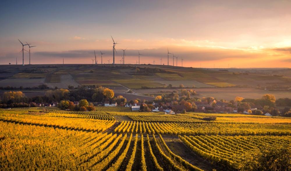 de 10 grootste trends met impact op sustainability - Je vindt ze hier.