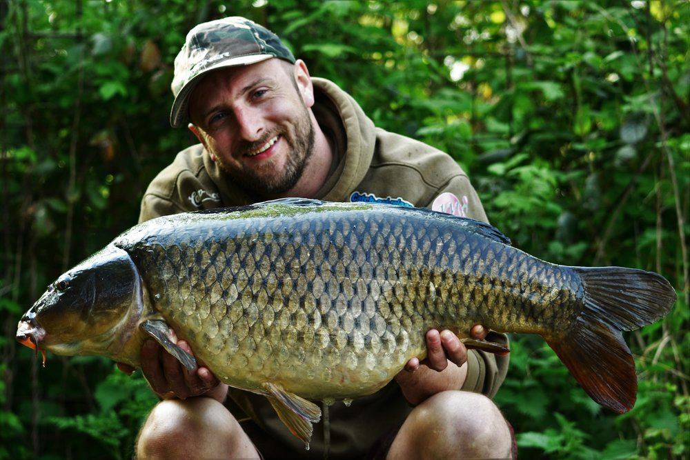 A 26lb Starry's brace common.