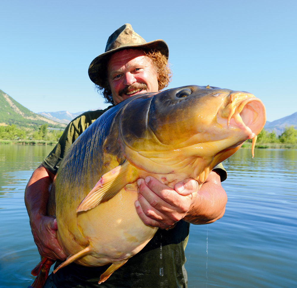 Chasing giants like this 70lb+ Alpine mirror was my ultimate goal.