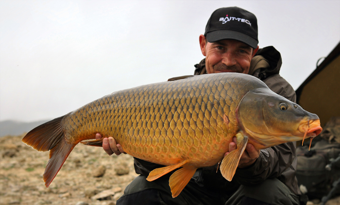 A stunning Buendia common.